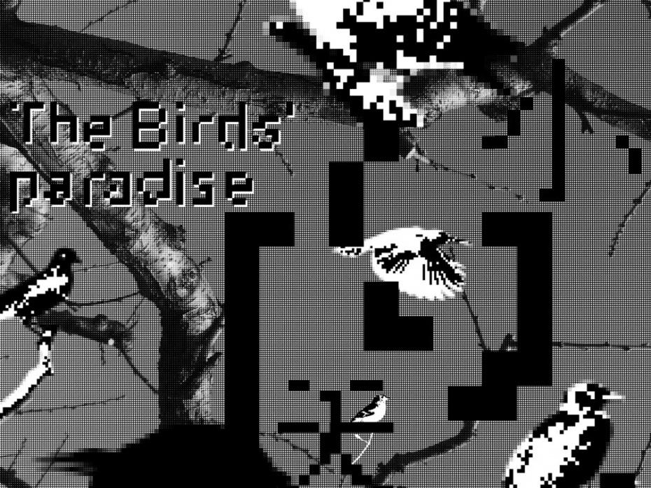 The birds' paradise 1