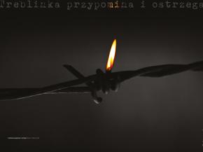 Album: 12345, Zdrodowski 11