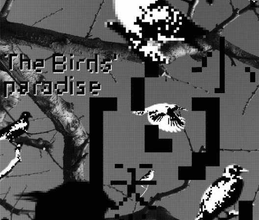 The birds' paradise